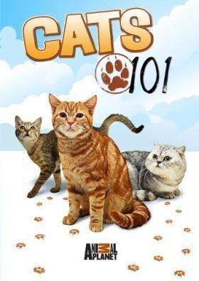 101 kiscica 1. évad (2008) online sorozat
