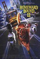 Úton hazafelé 2 - Kaland San Franciscóban (1996) online film
