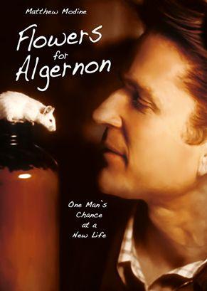 Virágot Algernonnak (2000) online film