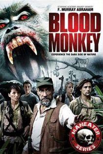 A dzsungel markában (2007) online film