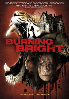 Fényes égő (2010) online film