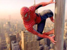 A csodálatos Pókember titka (2007) online film