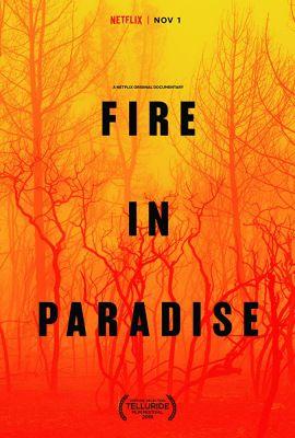 A kaliforniai nagy tűz nyomában (2019) online film