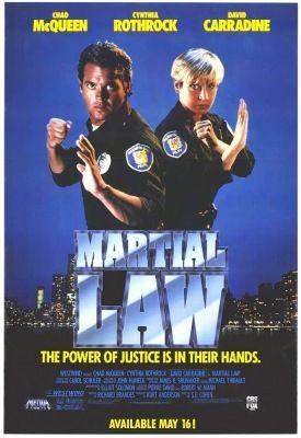A küzdelem törvénye (1990) online film