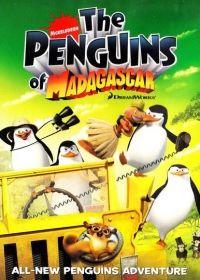 A Madagaszk�r pingvinjei 2. �vad (2010) online sorozat