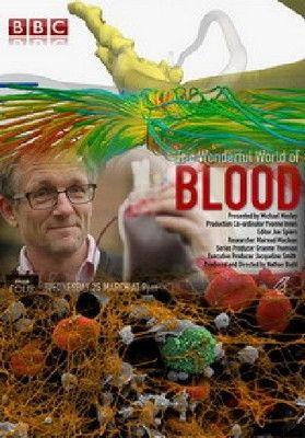 A mindenható vér (2015) online film