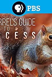 A mókusok világa (2018) online film