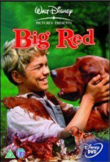 A nagy v�r�s kutya (1962) online film