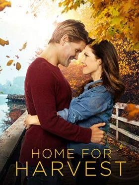 A szerelem otthon lakozik (2019) online film