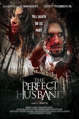 A tökéletes férj (2014) online film