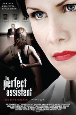 A tökéletes titkárnő (2008) online film