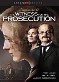 A vád tanúja (2016) online sorozat