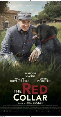 A vörös nyakörv (2018) online film