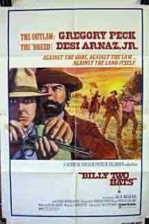 A hölgy és a bandita (1974) online film