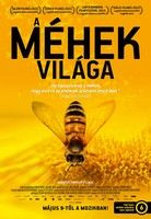 A méhek világa (2012) online film