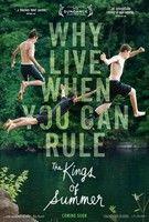 A nyár királyai (2013) online film