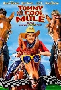 A rodeó bajnokai (2009) online film