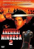 Amerikai nindzsa 2.: A leszámolás (1987) online film
