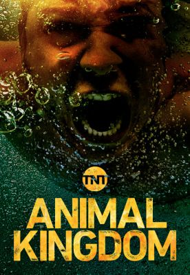 Animal Kingdom 3. évad (2018) online sorozat