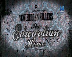 Az Edward-kori otthonok alattomos gyilkosai (2013) online film