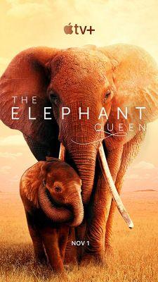 Az Elefánt királynő (2019) online film