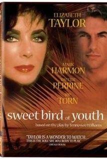 Az ifjúság édes madara (1989) online film