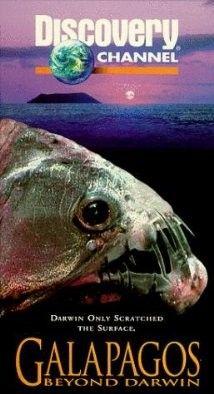 Az ismeretlen Galapagosz - Amit Darwin nem láthatott (1996) online film
