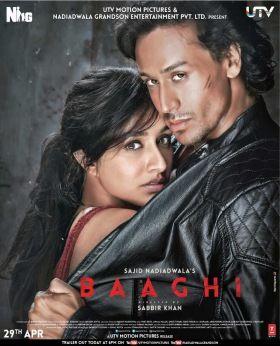 Baaghi (2016) online film