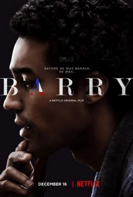 Barry (2016) online film