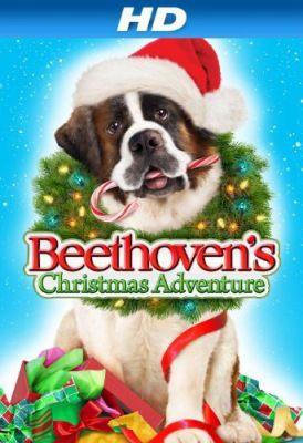 Beethoven karácsonyi kalandja (90) online film