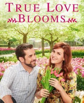 Bimbózó szerelem (2019) online film