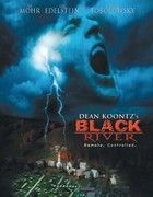 Black River - A város fogva tart (2001) online film
