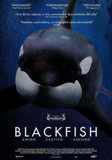 Blackfish (2013) online film