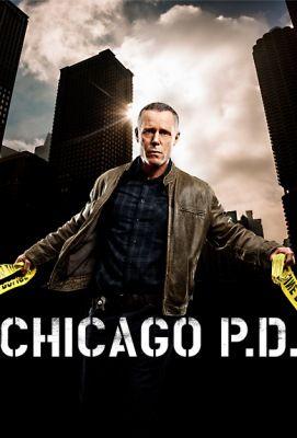 Bűnös Chicago 5. évad (2017) online sorozat