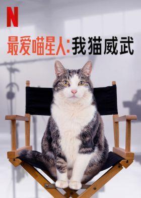 Cicavilág – Óda a macskákhoz (2021) online film