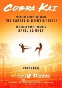 Cobra Kai 1. évad (2018) online sorozat