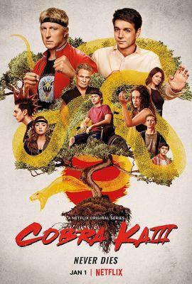 Cobra Kai 3. évad (2021) online sorozat