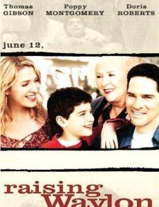 Családot örökségbe (2004) online film