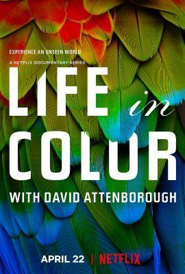 David Attenborough: Az élet színei 1. évad (2021) online sorozat