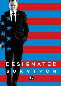 Designated Survivor 2. évad (2017) online sorozat