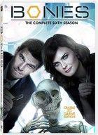 Dr. Csont 6. Évad (2012) online sorozat