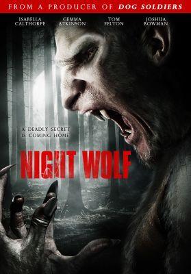 Éjjeli farkas (2010) online film