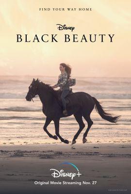 Fekete szépség (2020) online film