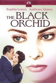 Az éjszaka kapui (Fekete orchidea) (1958) online film