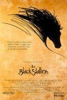 Fekete Villám (1979) online film