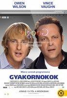Gyakornokok (2013) online film