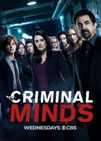 Gyilkos elmék 13. évad (2005) online sorozat