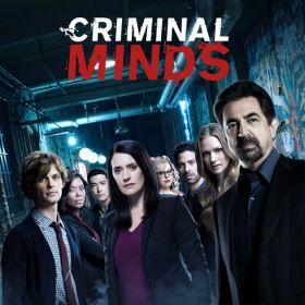 Gyilkos elmék 15. évad (2020) online sorozat