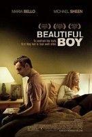 Gyönyörű fiú - Beautiful Boy (2010) online film