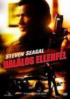 Halálos ellenfél (2009) online film